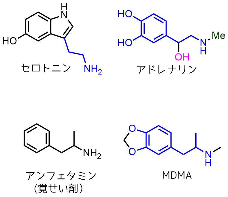 モノアミン神経伝達物質と薬物
