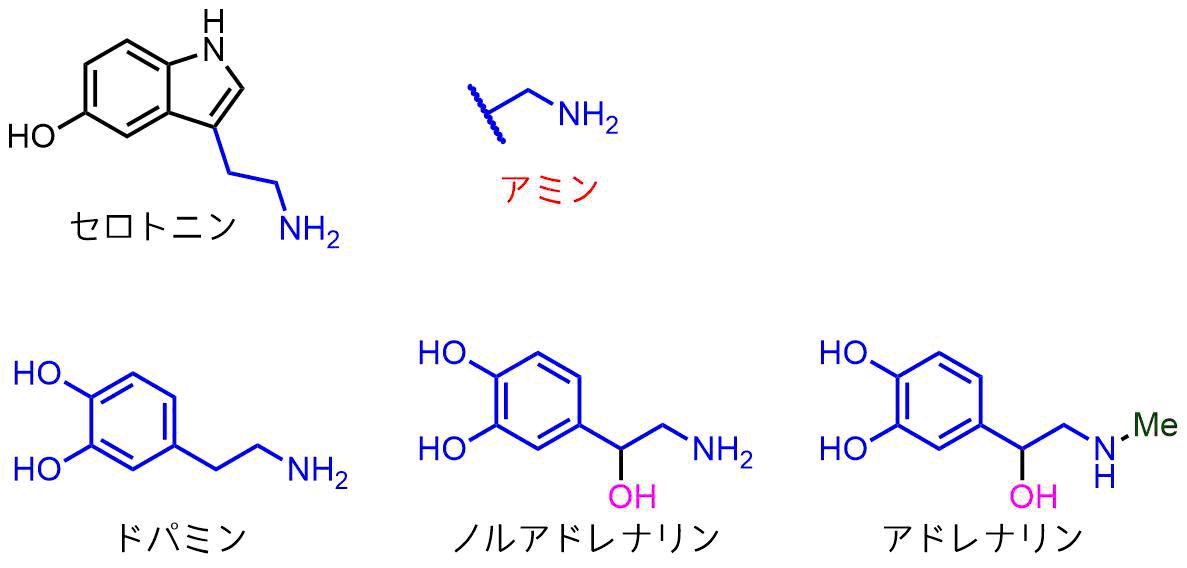 モノアミン神経伝達物質