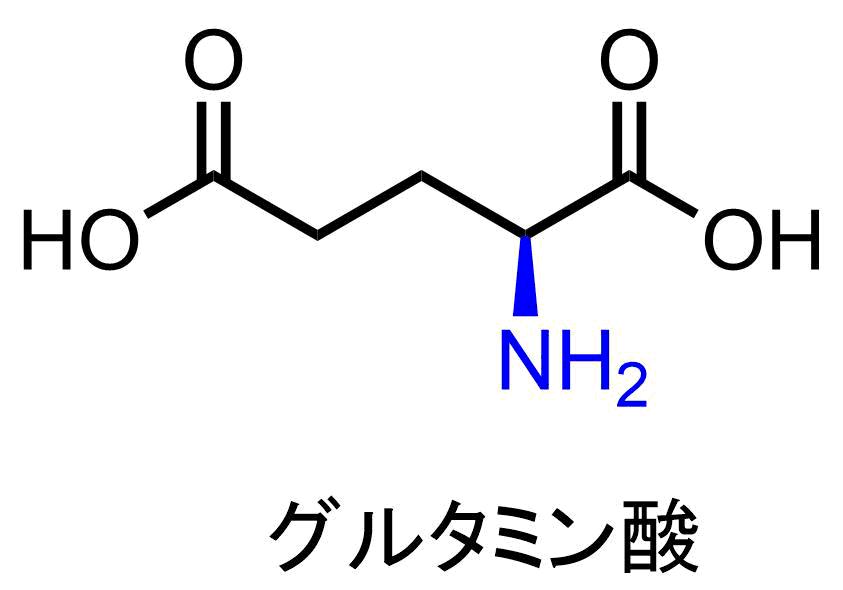 グルタミン酸はアミノ基を含む化合物