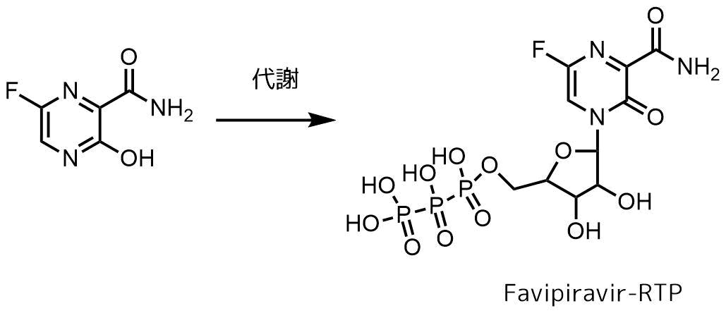 ファビピラビルの代謝