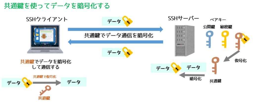 SSH1は共通鍵で通信を暗号化