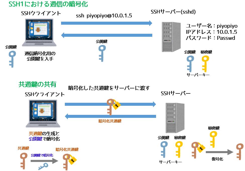 SSH1の通信暗号化法