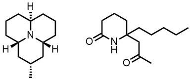 テントウムシアルカロイドの主成分