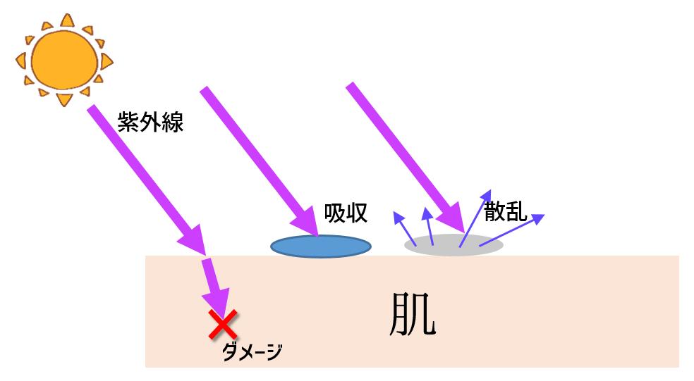 紫外線の吸収、散乱