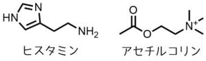 一般的な低分子毛虫毒の構造