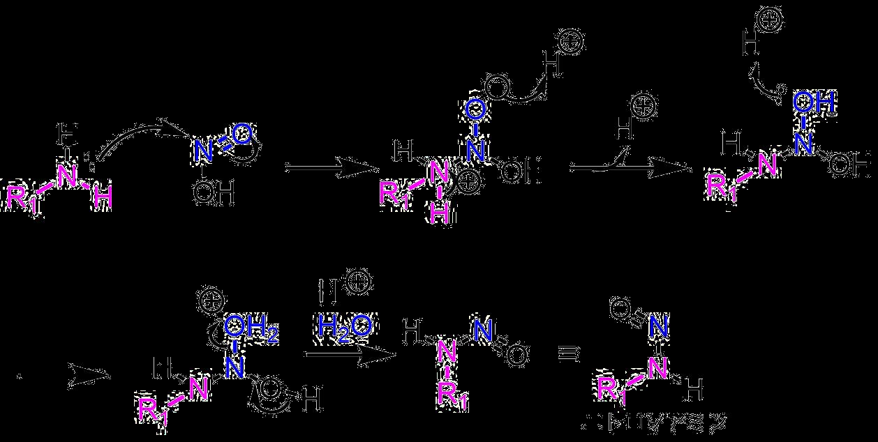 ニトロソニトロソアミンの生成