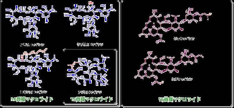 マクロライド系抗生物質
